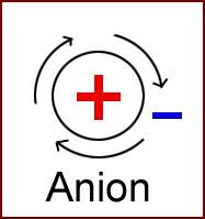 Bioélectronique ions polarité anion